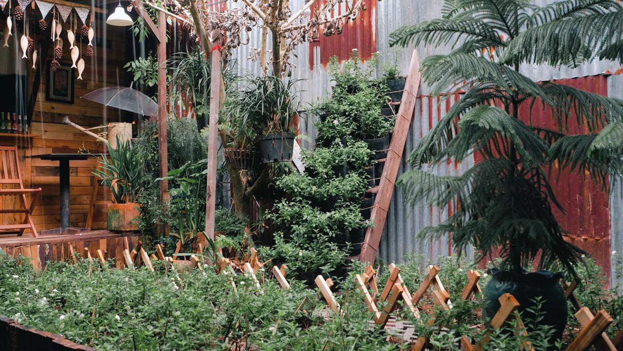 Vườn cây ở tiệm cà phê Khoảnh Khắc