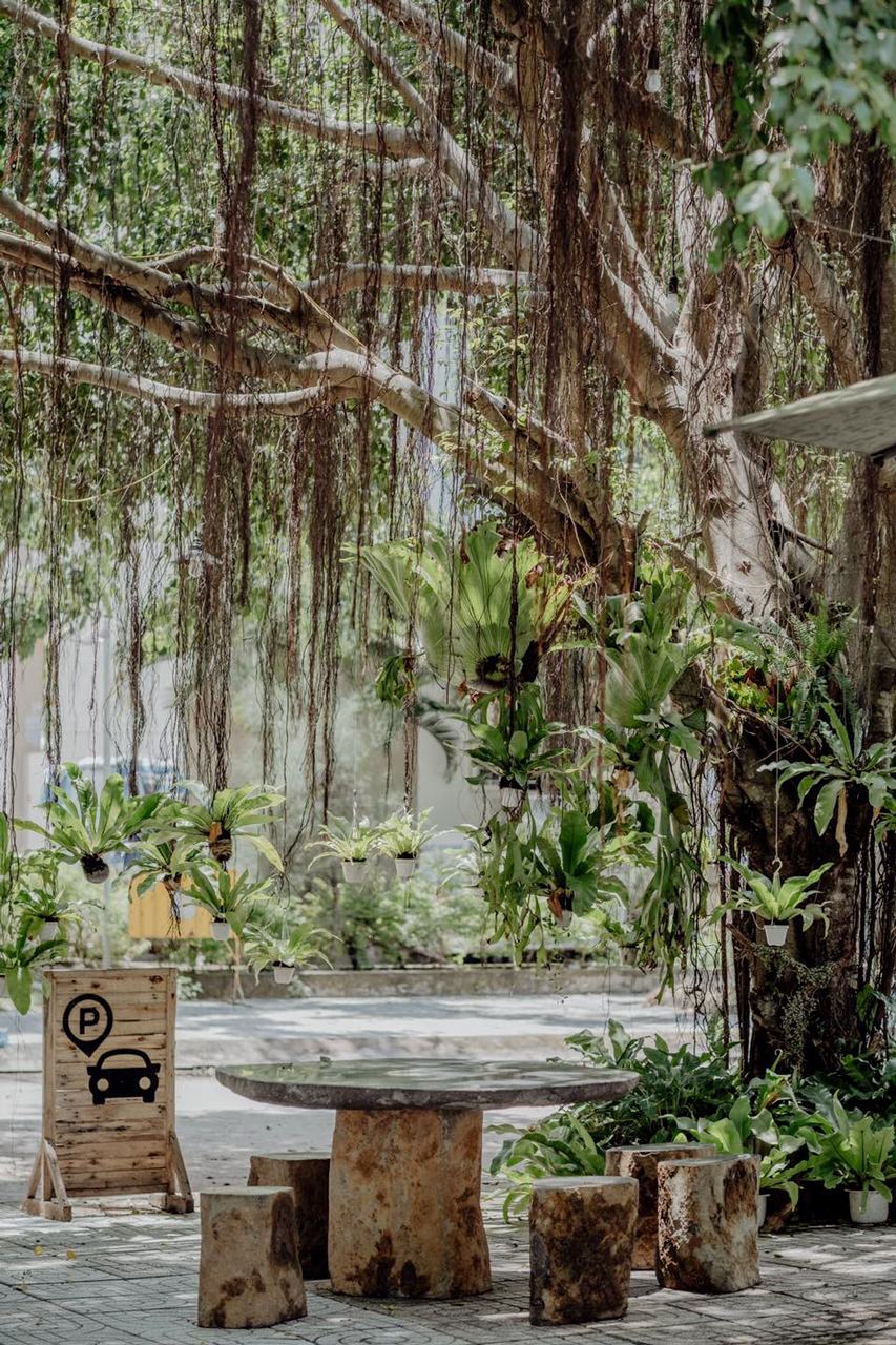 Bàn làm việc dưới cây xanh ở Believe Coffee Cần Thơ
