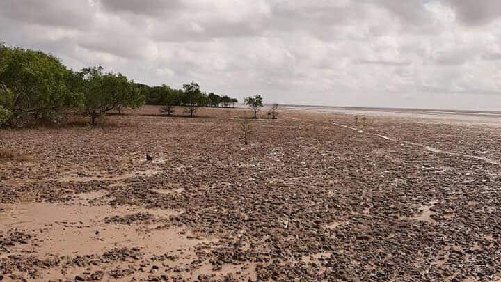 Bãi biển Mỏ Ó với lớp bùn ven bờ không thích hợp tắm